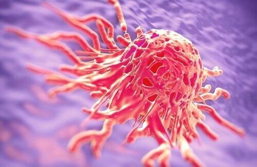 Voedingsmiddelen die mogelijk kankerverwekkend zijn