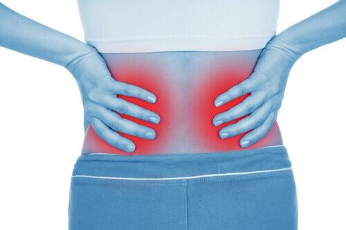 Slechte gewoontes die je nieren beschadigen