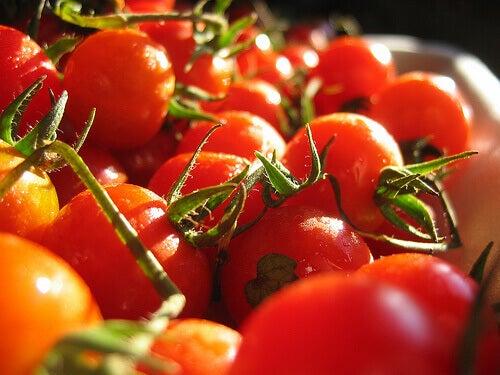 Tomaten aan een tros