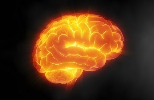 7 tips om je hersenen scherp te houden