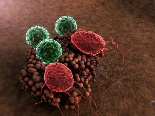 5 symptomen van een verzwakt immuunsysteem