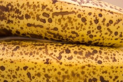 banaan21
