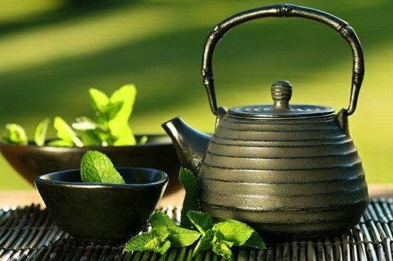 Groene thee is een van de lekkere natuurlijke drankjes voor vrouwen