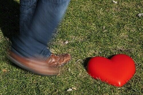 Hart in het gras