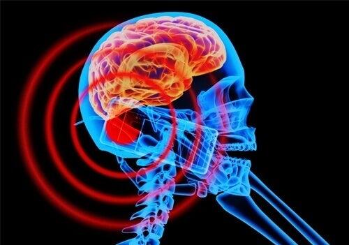Wat zijn elektromagnetische velden en hoe beïnvloeden ze je?