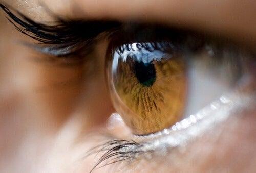 Wat kan de kleur van je ogen je vertellen?