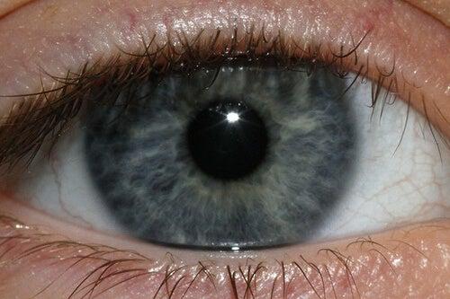 oogkleur2