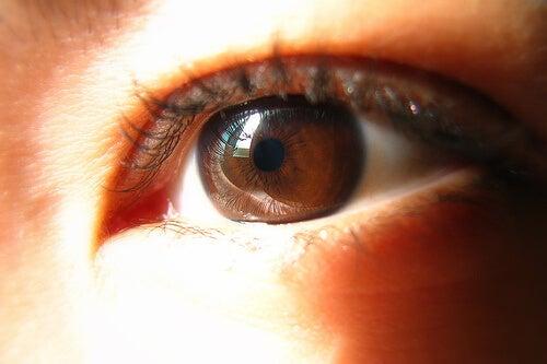 oogkleur3