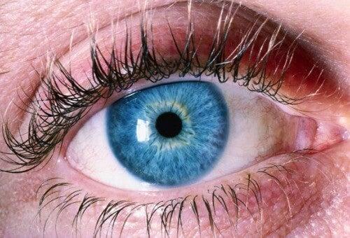 Spoor Alzheimer op door je ogen
