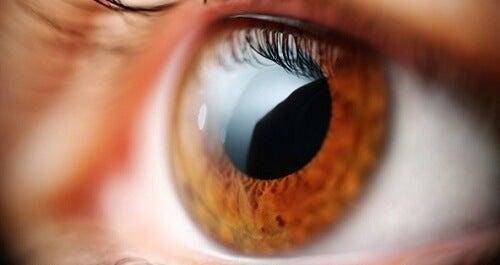 Oefeningen tegen vermoeide ogen