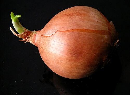 een ui