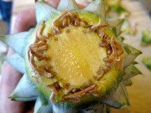 Een opengesneden ananas