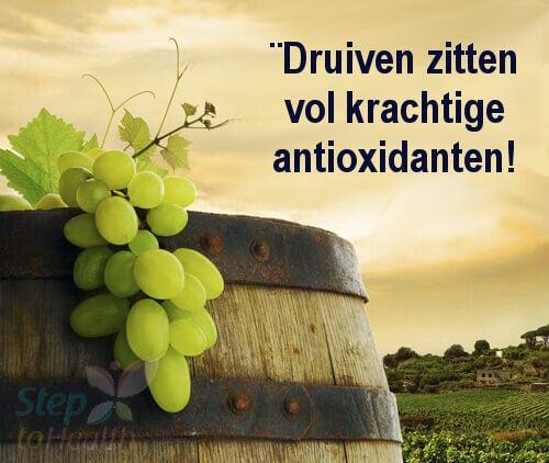 Druiven tegen Kanker