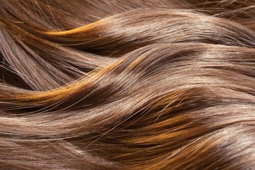 Eieren zijn goed voor de gezondheid van het haar