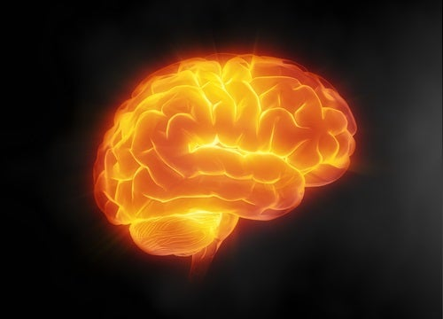 hersenverzorging