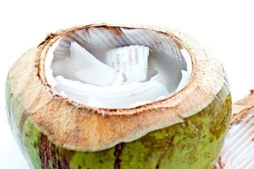 kokosnoot2