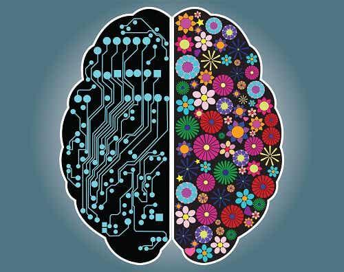 Ontdek of je een rationeel of intuïtief persoon bent