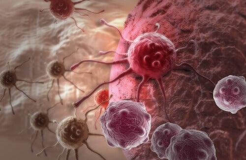 Kankercellen