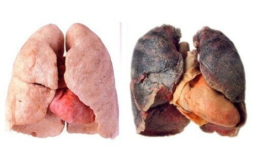 Tips voor schonere longen