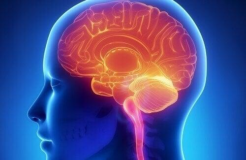 Multiple sclerose is een auto-immuunziekte