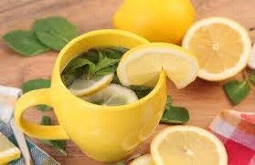De voordelen van citroenschil