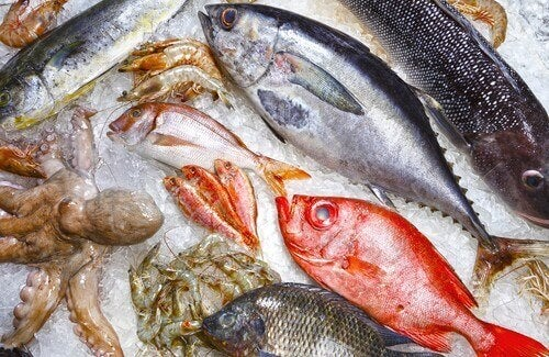 5 soorten vis die je zou moeten vermijden