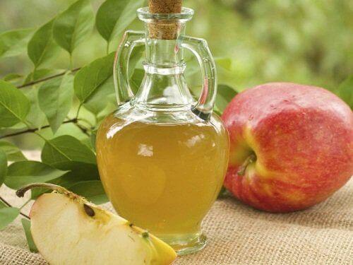 Je nieren ontgiften met appelazijn