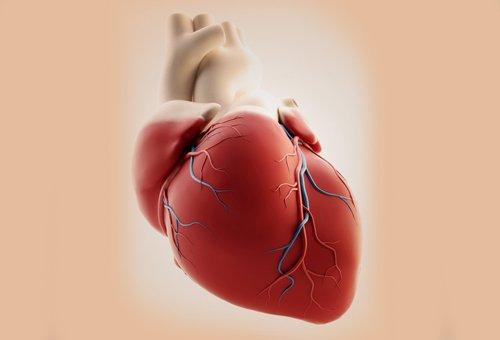 Hart dat last heeft van hartritmestoornissen