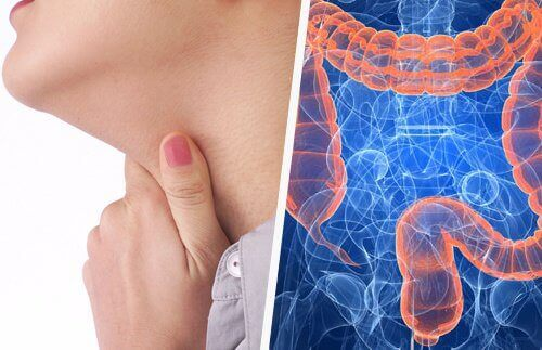 Het verband tussen keelproblemen en de darmen
