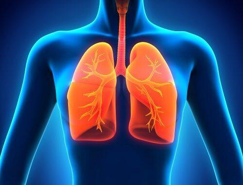 Als je je nies inhoudt kunnen pathogenen en andere ziektekiemen dieper in je neus, middenoor, sinussen dringen