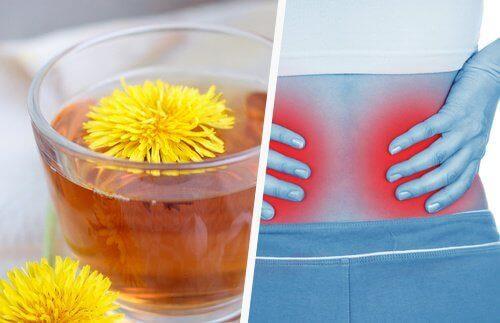 Je nieren helpen ontgiften met 5 simpele tips