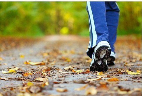 Mentale vermoeidheid verlichten met wandelen