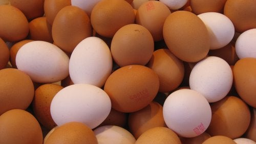 Toepassingen voor eierschalen van verschillende kleuren