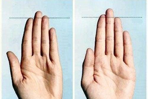 Wat vertellen je vingers over je lichaam en gezondheid