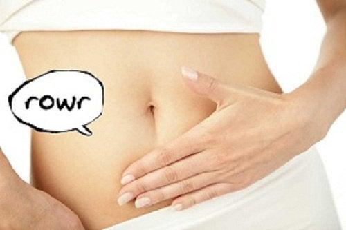 Wat je nog niet wist over een knorrende maag