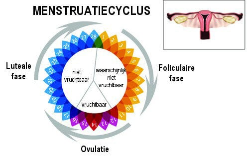 onregelmatige cyclus