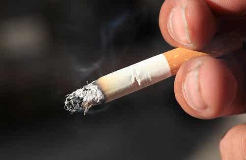 Planten die je helpen te stoppen met roken
