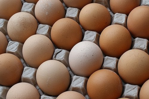 Eieren in Eierdoos