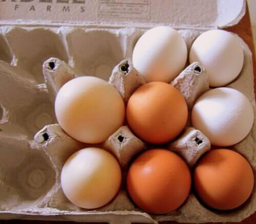Eierdoos met eieren