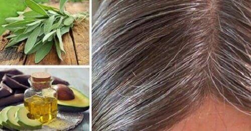 grijze haren voorkomen