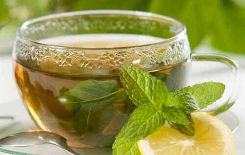 Een gids voor het maken van thee en infusies