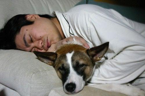 Slapende Jongen en Hond