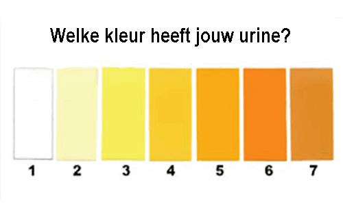 Kleur van je Urine