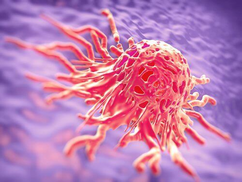 Kankercel