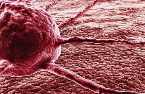 Chilipepers vs. kanker: de wonderlijke stof capsaïcine