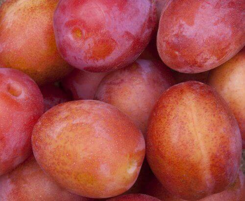 Andere voedingsstoffen van gedroogde pruimen