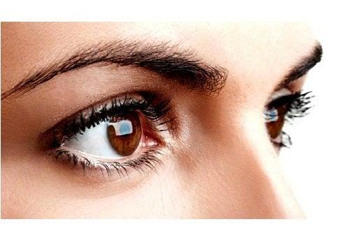 Close up van wenkbrauwen en ogen