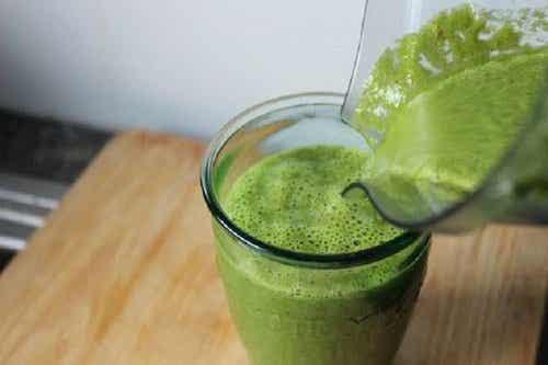 Gezond gewichtsverlies met het groene 15-dagenplan
