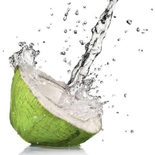 Water uit een Kokosnoot