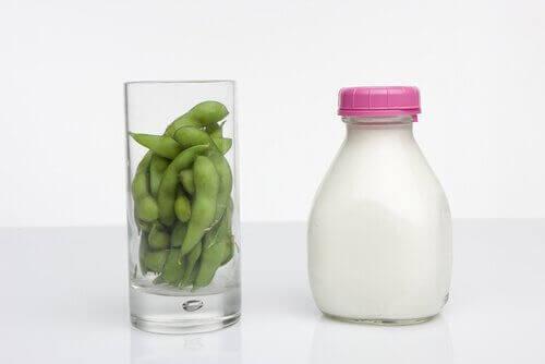 Melk en Bonen